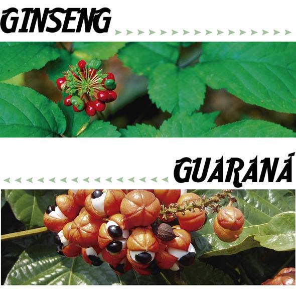 ginseng&guarana 1